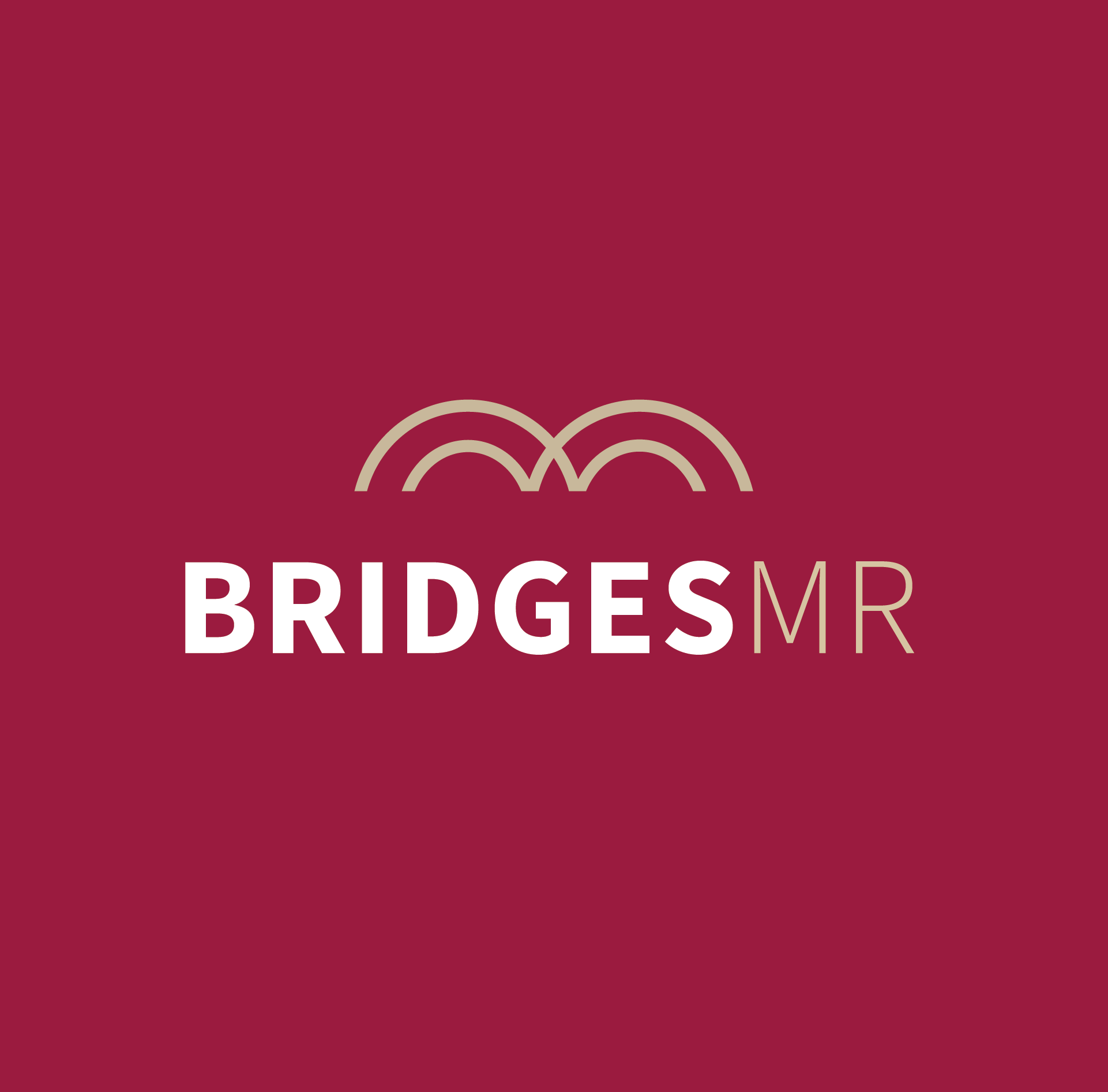 BRIDGES MR – CUSTOM BUILDER