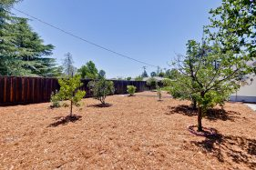 309 Redding Rd Campbell CA-print-065-Backyard-3232x2155-300dpi