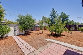 309 Redding Rd Campbell CA-print-066-Backyard-3209x2139-300dpi