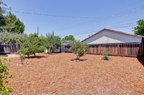 309 Redding Rd Campbell CA-print-067-Backyard-3225x2150-300dpi
